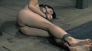 Check out obscene torture play cash reserves shackled slut sucking master?тs cock